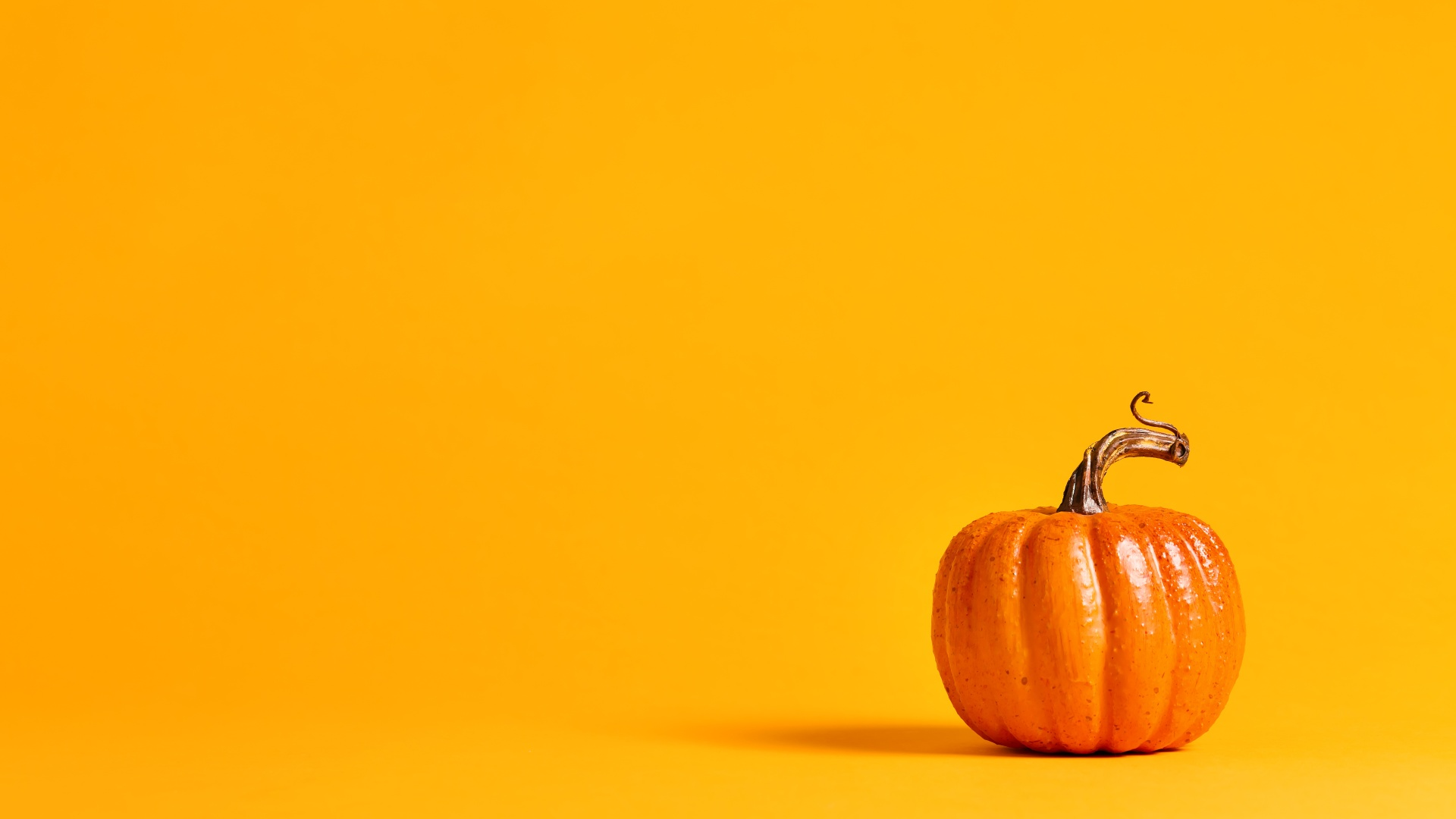 Trader Joe's Released Their Pumpkin Line For Fall [PICS]